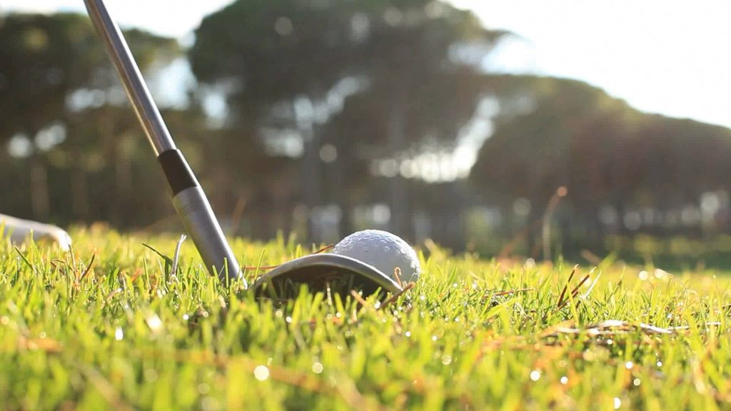 Tampa Golf