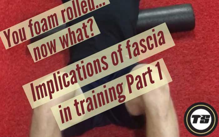Implications of fascia in training